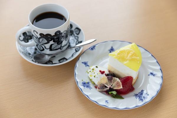 【数量限定】couleur siogama カットケーキ(内容・価格は随時変更)